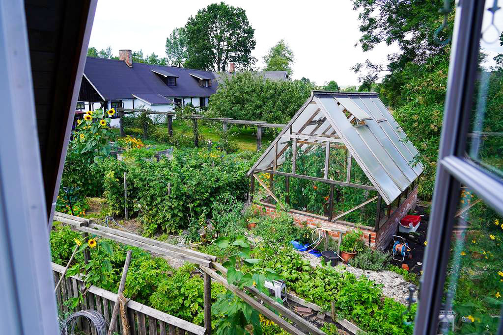 View over the veggie patch from the northern bedroom.