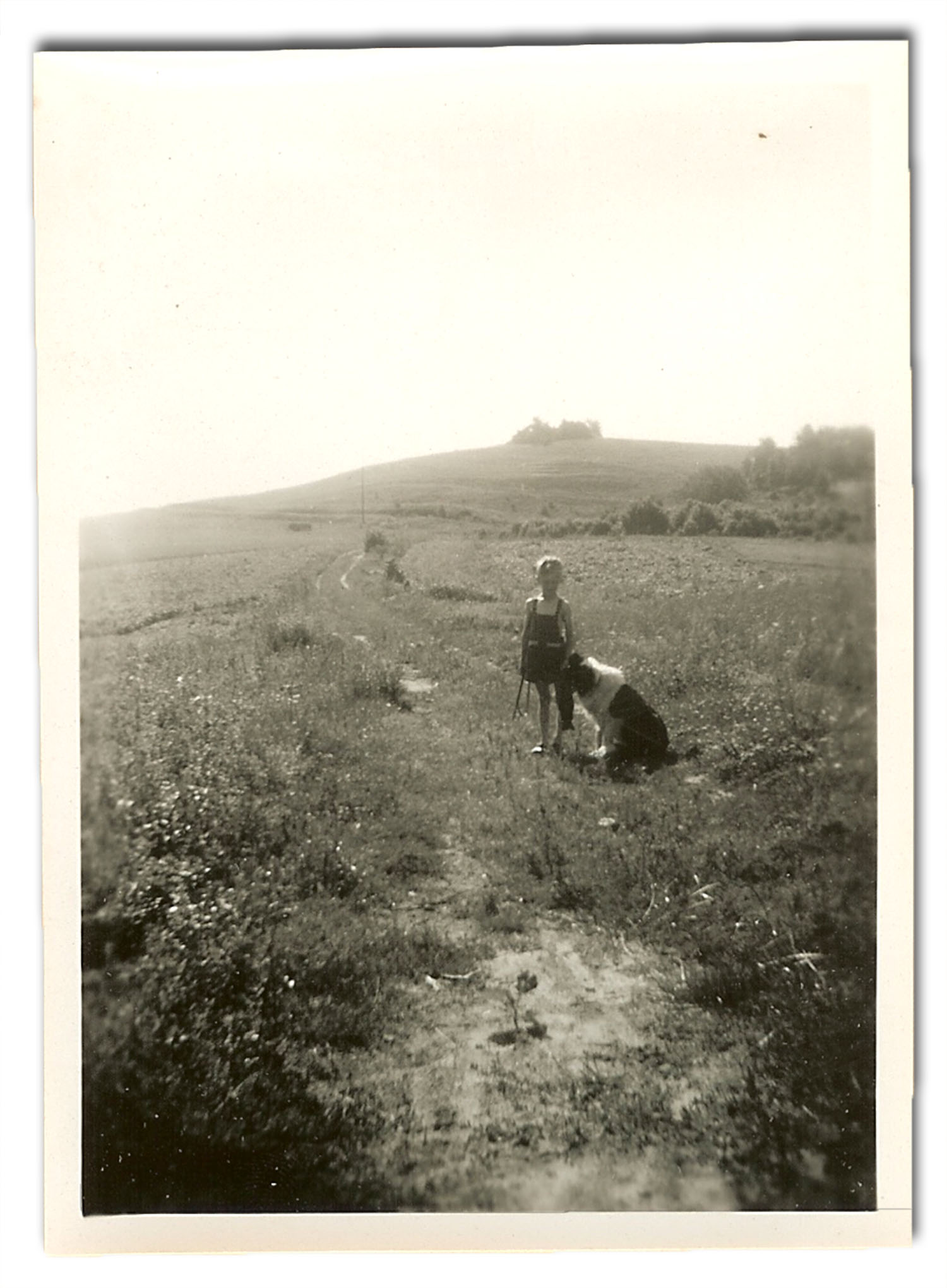 Jörgen together with the dog Lizzi. The bronze age grave Ornahögen is seen in the background.