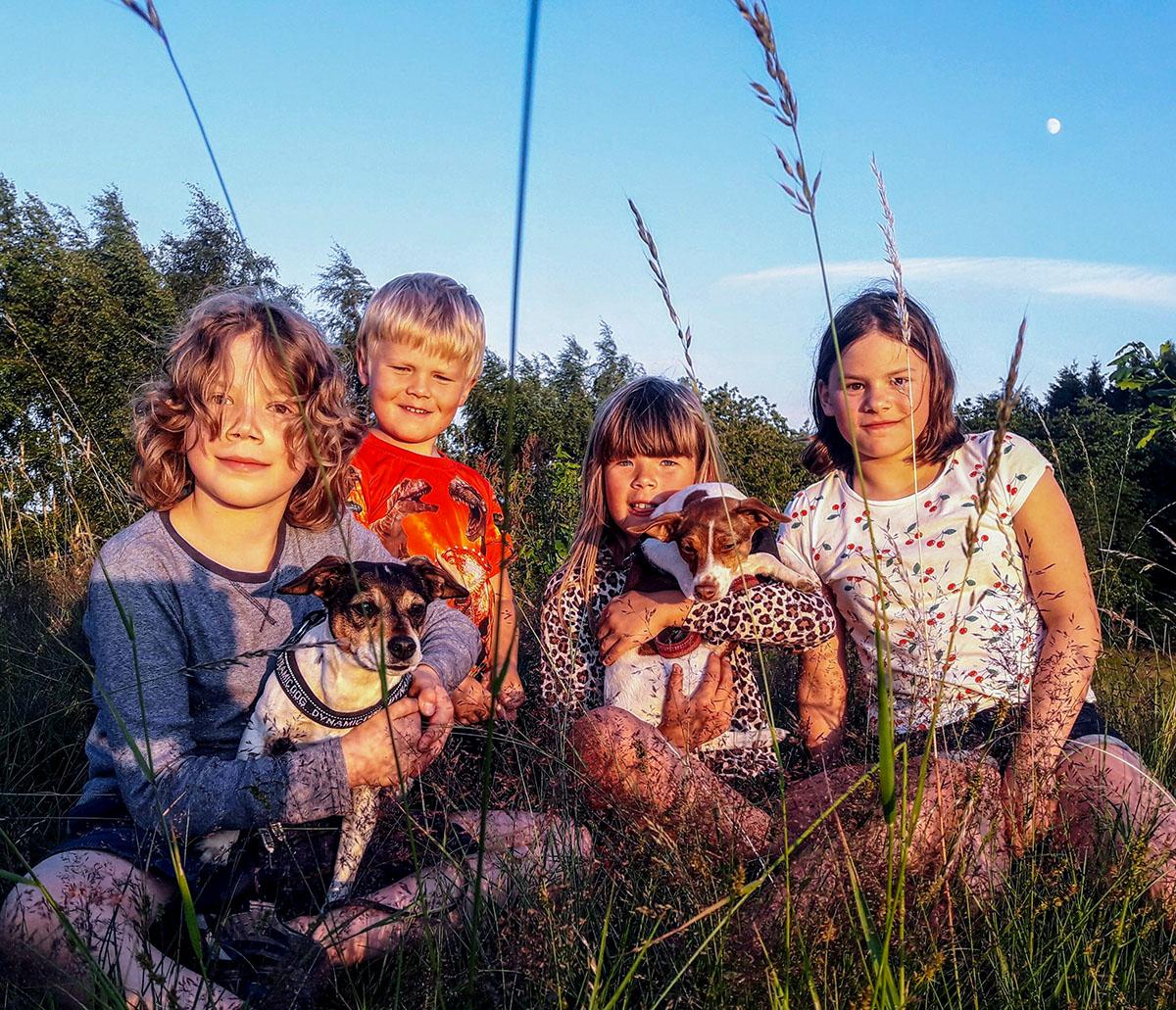 Gårdshundarna Milou och Ronja är snälla och leker ofta med barnen.